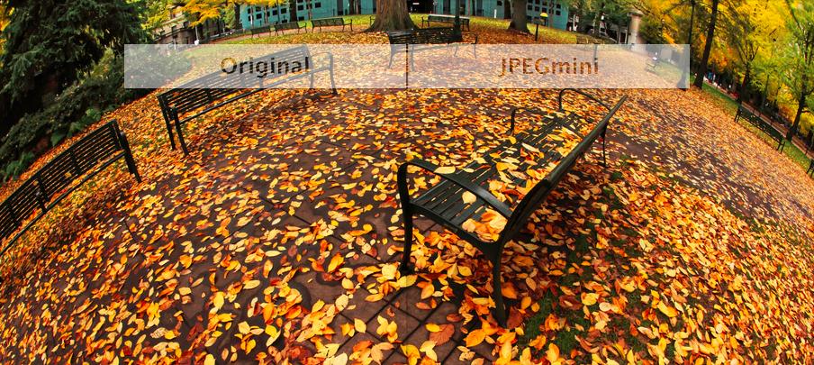 JPEGmini-Split-Screen
