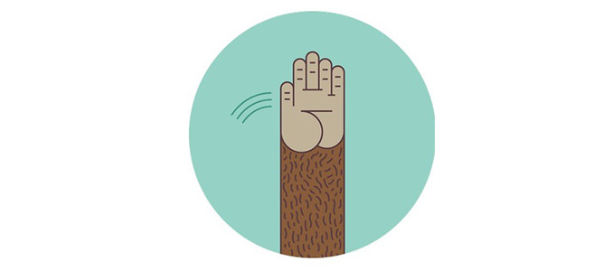 mailchimp-high-five