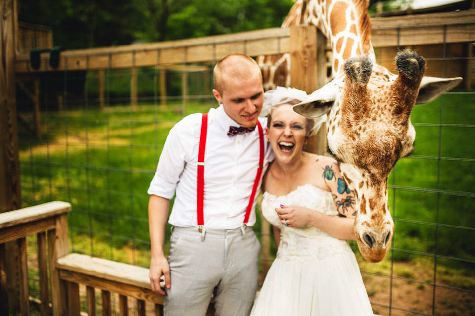 elmwood park zoo, giraffe, norristown, wedding